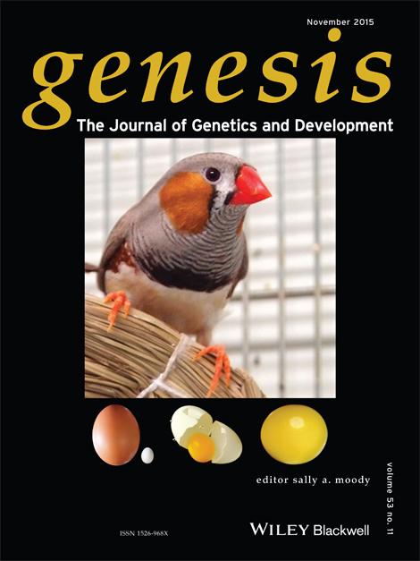 http://ircms2.ssrd.jp/research/guojun_sheng/images/cover.jpg